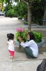Baby Naly and the lotus offering - Wat Champuh Ka'ek, Kandal