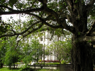 View from tree behind the stupa - Choeung Ek, Kandal