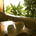 A quiet place to hide and work behind walls of plants - Cafe Eden, Phnom Penh