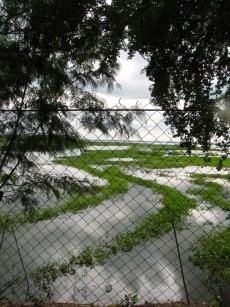 The lake around the back of the site - Choeung Ek, Kandal