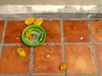 Mango remains scattered among the litter in front of the memorial - Wat Kampong Tralach, Kampot
